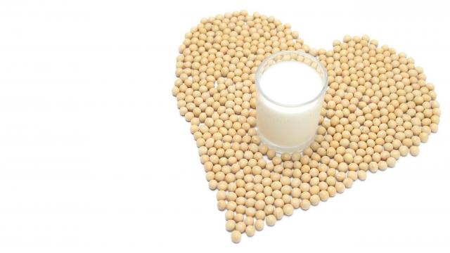 豆腐や納豆でバストアップ?大豆と女性ホルモンには深い関係があった!